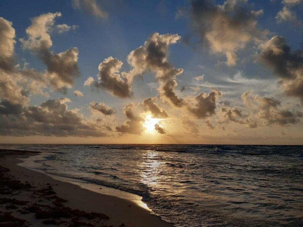 Liberación de Tortugas Riviera Maya